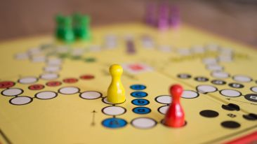 Board Games at The Royal Plaza Gangtok, hotels in gangtok