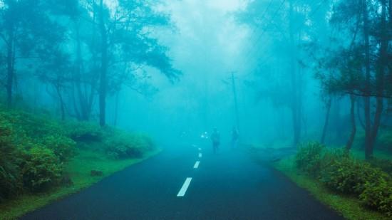 Enjoy Greenery with Sarovar Hotels, Shimla Sarovar Hotels, Sarovar Hotels, Sarovar Shimla