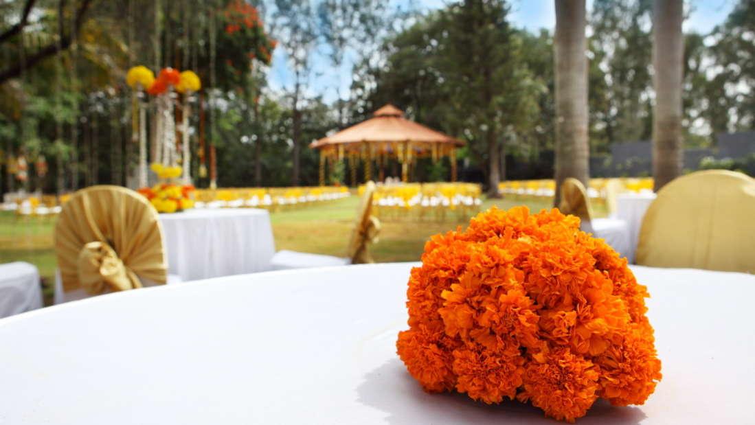 Events and Weddings in Bangalore at Royalton Leisure Resort Spa Bangalore 19 45