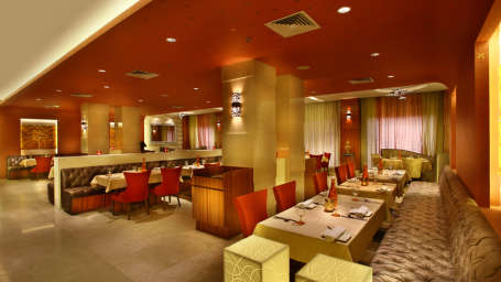Chingari-Indian Restaurant Park Plaza East Delhi 1