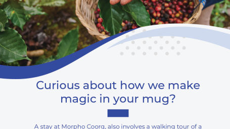 Coffee Plantation Flyer Morpho-02