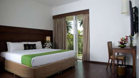 Garden View Rooms, Stay Near Lalbagh, Temple Tree Hotel 2