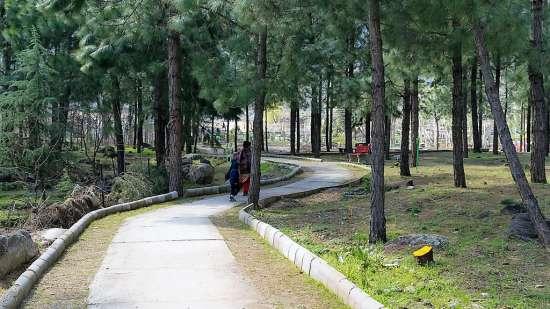 Baragarh Villa Kullu Nature Park Kullu Bargarh Villa Kullu Himachal Pradesh