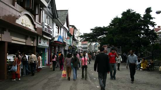 The mall road shimla Marigold Sarovar Portico Shimla, budget hotels in Mashobra