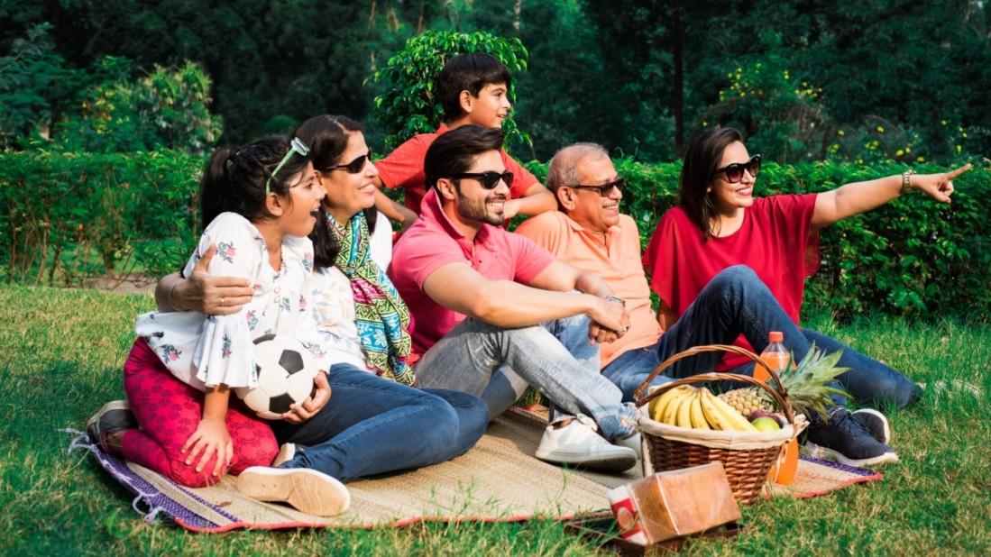 StockImageFactory.com-photo-ID 0000165597 indian-family-enjoying-picnic-outing-2