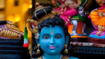 Ranganatha_ Nidhivan sarovar portico Vrndavan_ places to visit in Vrindavan 131