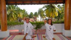 Vaidyasala Yoga