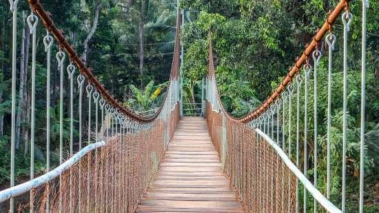 thekkady Poetree Sarovar Portico places to visit in Kerala 3
