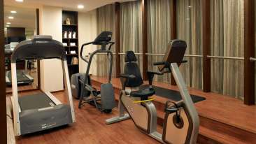 Fitness Centre at Blupetl Hotel