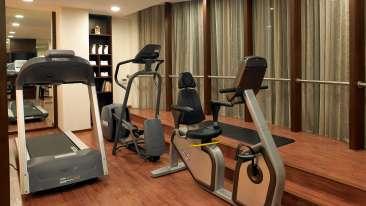 Fitness Centre at Blupetl Hotel