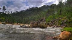Kosi River the riverview retreat corbett resort