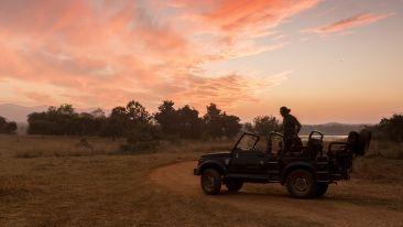 Jhalai Safari