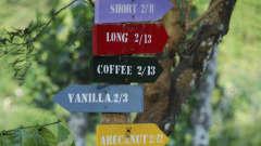Tranquil Resorts, Wayanad Wayanad Tranquil Walks - Signboards