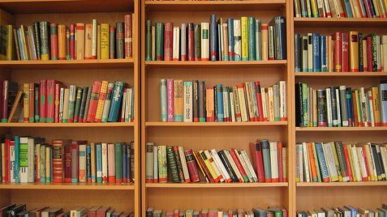 Library at The River View Retreat - Corbett Resort Corbett