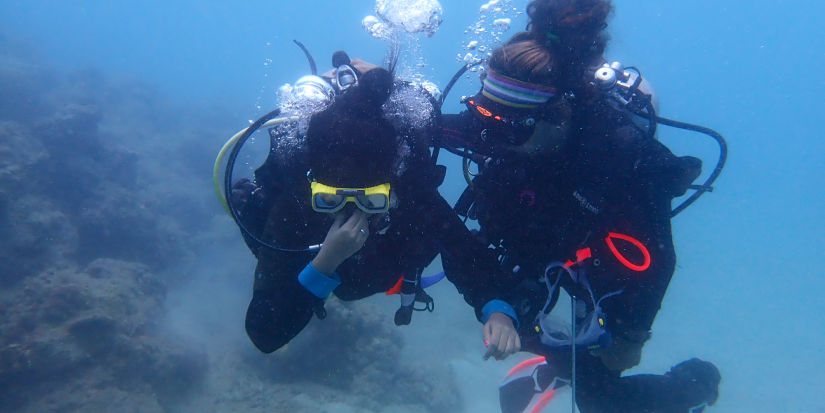 Experience diving