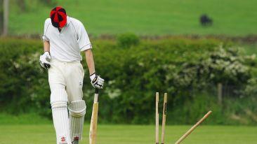 cricket-724616 960 720