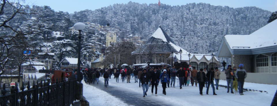 Ridge  Shimla Marigold Sarovar Portico Shimla Hotels in Shimla