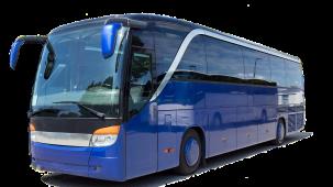 coach-3206326 1280