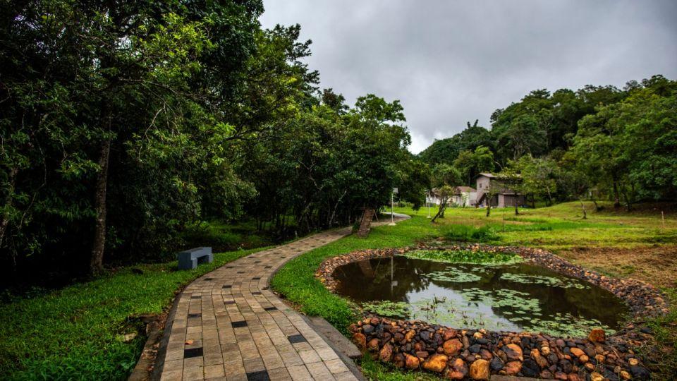 Rooms in Wayanad, Best Resorts in Wayanad, Nature Resorts in Vythiri 9