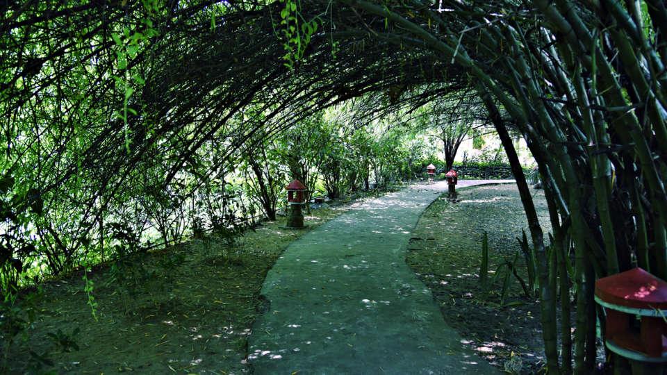 Tiger Camp Resort, Corbett Uttarakhand  DSC2322