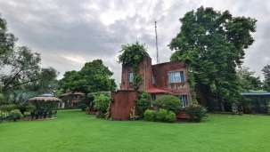 The Homestead Homestay in Corbett Ramnagar homestay 2