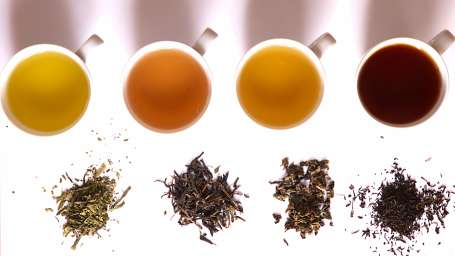 Central Hotels  Tea in different grade of fermentation