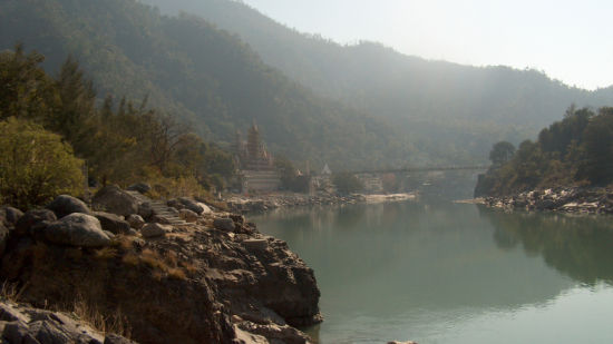 Forrest Rajaji National Park Resort Dehradun  Rishikesh