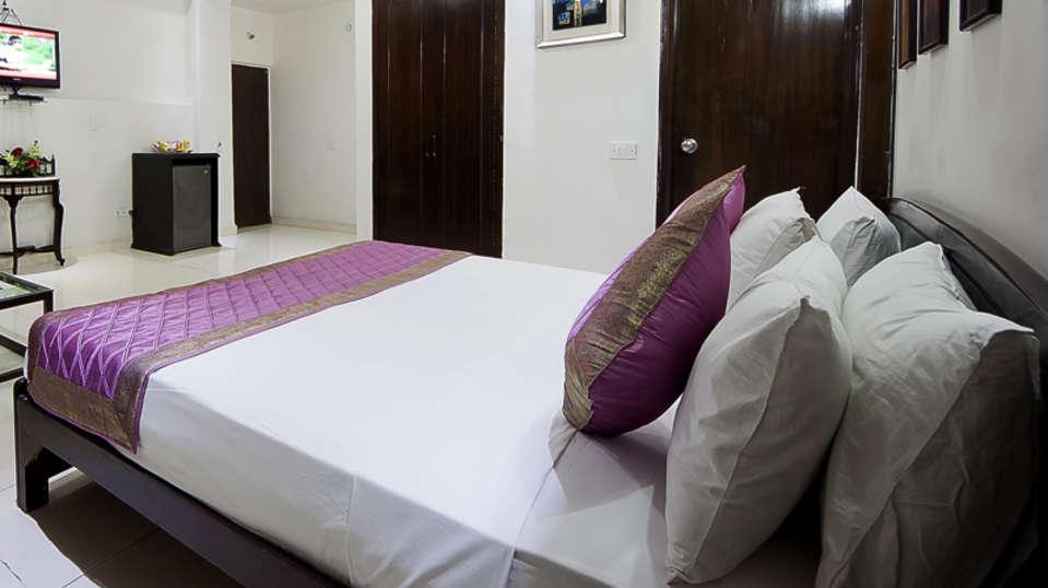 Hotel Sarthak Palace, Karol Bagh, New Delhi New Delhi And NCR dsc 0359