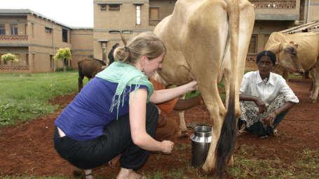 Farm Animals at Our Native Village - good resorts near bangalore 95