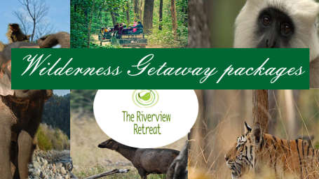 Leisure Hotels  Wilderness Getaway