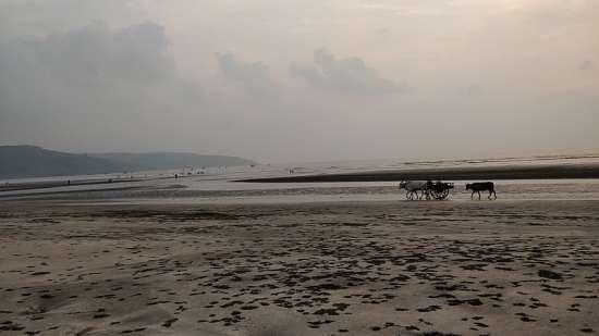 Ladghar beach Lotus Beach Resort Murud Beach-Dapoli Ratnagiri