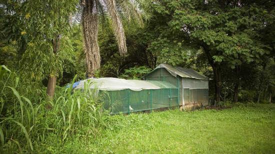 Lotus Riverside Resort, Silvassa Silvassa Lawn Lotus Riverside Resort Silvassa 2