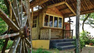 Konark Beach Resort  Lotus Eco Beach Resort  Konark Resort
