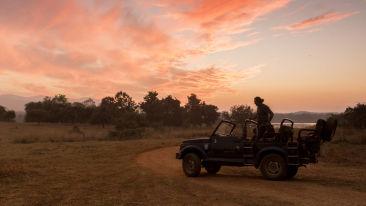 activties-exterior-Reni Pani Jungle Lodge-elephant safari-hotel near satpura reserve