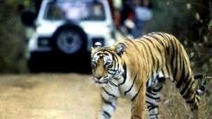 Ganga Lahari Hotel Haridwar Location Jim Corbett National Park
