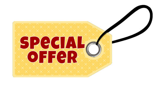 Special Offer at Hotel Le ROI Udaipur near Udaipur Railway Station