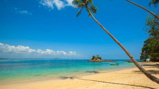 Betul Beach Best Beaches in Goa Larisa Beach resorts in Goa