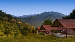 cottage tents