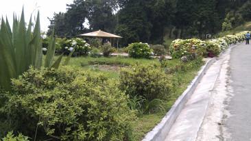 Delo Park Kalimpong