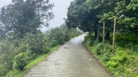 Benog Mountain Quail Wildlife Sanctuary