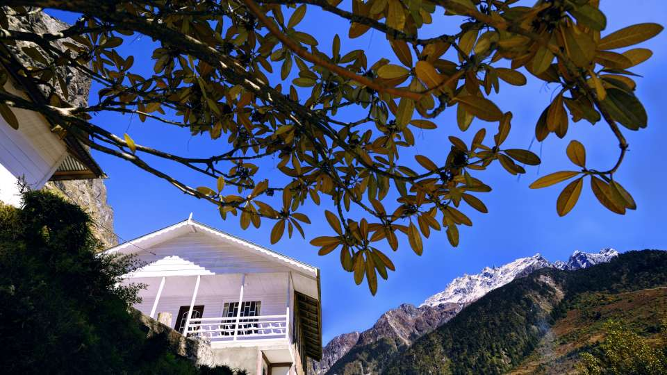 Exterior View 3 at Summit Alpine Resort Lachung