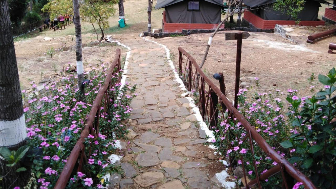 Let s Camp Yercaud tents 2