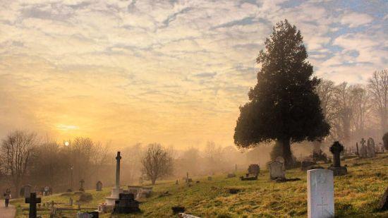 Kohima Cemetery
