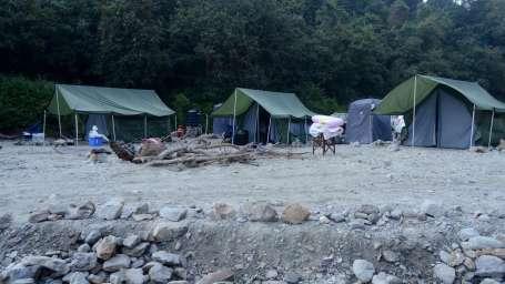 Eco- Camping at Wild Brook Retreat, Rajaji National Park