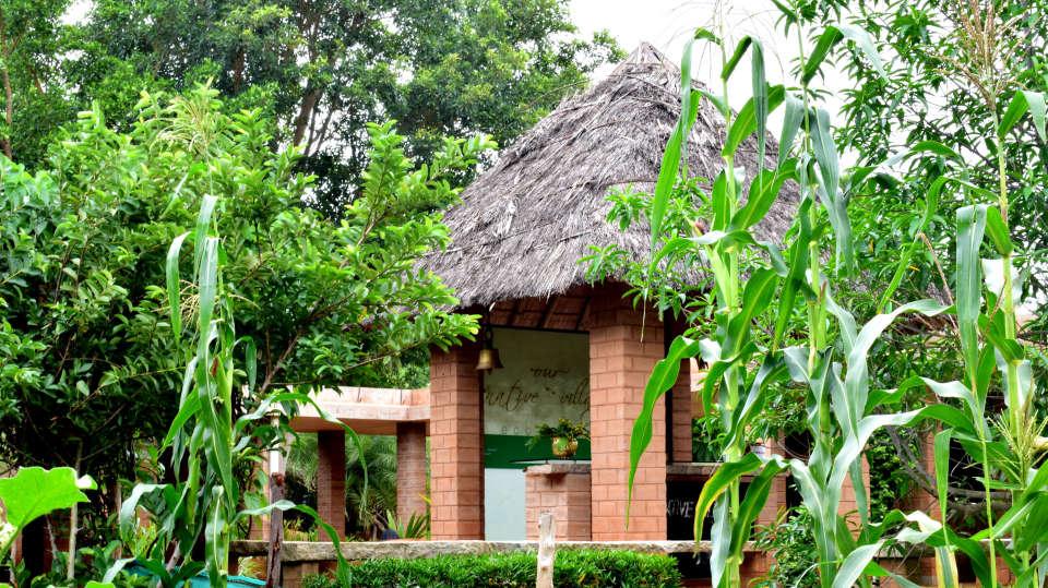 Our Native Village Bengaluru DSC 0326