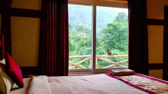 Hotel in Kaziranga, Summit Green Village, kaziranga wildlife safari8