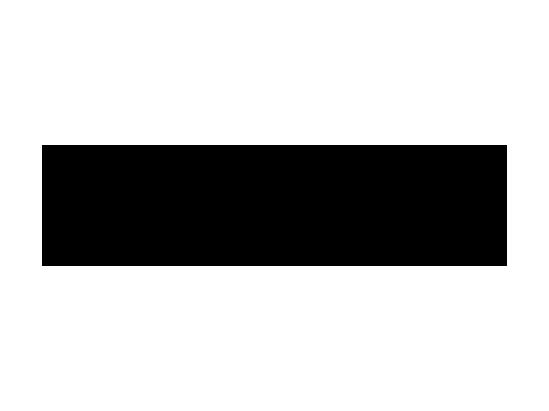 palmbeacher logo 0 0