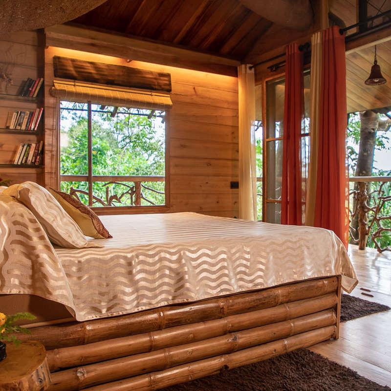 Tree House Tranquil Resort Wayanad3