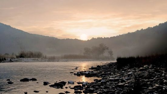 Nature - The Hideaway River Lodge - Corbett Resort in jim corbett national park