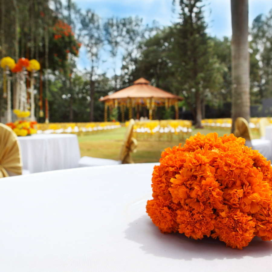 alt-text Events and Weddings in Bangalore at Royalton Leisure Resort Spa Bangalore 19 45